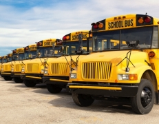 many school buses in a line