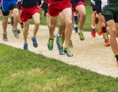 War Eagles Cross Country Get Fourth Place